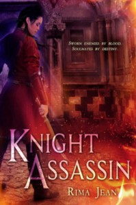 Knight Assassin Cover