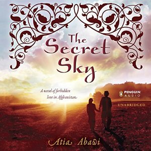 The Secret Sky Cover