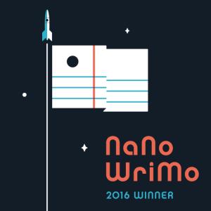 nano-2016-winner