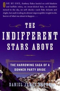 the-indifferent-stars-above-cover